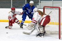 Girls' Hockey