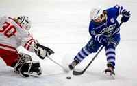 Cambridge-Isanti vs Elk River