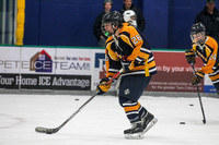 Hermantown vs. Wayzata 12/2/2016 Photos by Mark Hvidsten