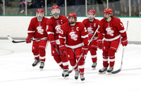 Benilde-St. Margaret's at Wayzata 2/11/2016 Photos by Cheryl Myers