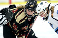 MN Girls Hockey Hub