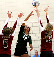 Rochester Mayo at the Shakopee Volleyball Tournament 9/12/2015 Photos by Drew Herron