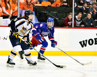 Class 1A quarters Spring Lake Park vs. Hermantown 3/4/2015 Photos by Nick Wosika